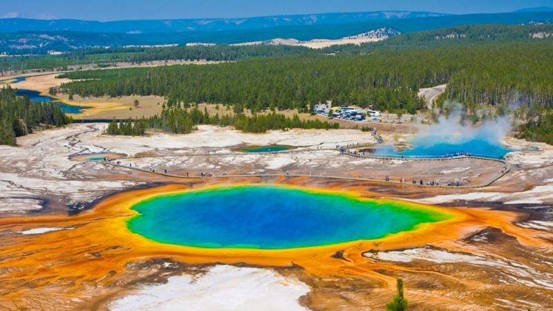 Yellowstone - Surga Alam dan Satwa Liar yang Tak Tersentuh